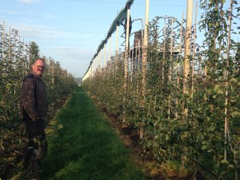 fruit grower Peter Ham in orchard